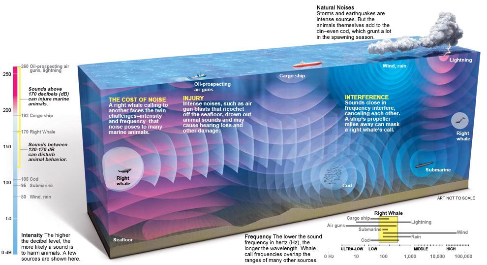 noisy-ocean-graphic